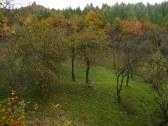 Chalupa U KAVICKÝCH - Brestovec - MY #21