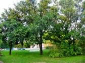 Víkednový domček s bazénom - Trstice #16
