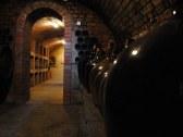 Vinohradnícka chata - Skalica - SI #16
