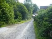 Okolie - cesta do lesa