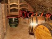 vinohradnicky dom u studanky