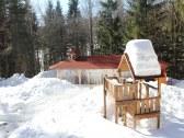 V zime pred chatou