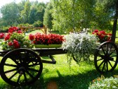 Zákutie záhrady