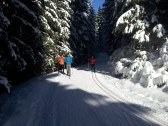 Holiday Barn - Brestovec - MY #18