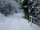 Bežkarska trať v zimnom období