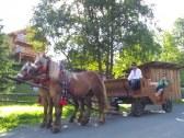 Možnosť jazdy kočom