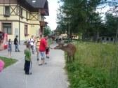 Vila Park - Tatranská Lomnica - PP #3