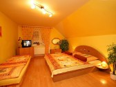 Apartmánový dom a samostatná chatka ELEGANT - Liptovské Sliače #4
