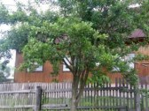 chata u emky
