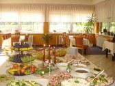 Park hotel Stupava - Stupava #4