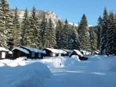 okolie zima