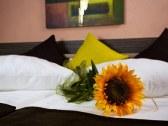 Hotel RELAX - Rajecké Teplice #5