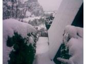 Romantika v zime s pohľadom na hrad Beckov