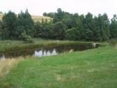 Drevenica pri rybníku - Žihľava - PT #15