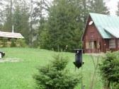Chata JULIE v Oraviciach - Vitanová #19