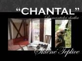 Chatka CHANTAL - Sklené Teplice #5