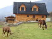 Kone pri chate - farma AJAX – prenájom koní
