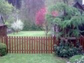 jar v záhrade
