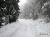 Chata MODROVÁ - Modrová #39
