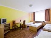 Horský hotel EVA - Svätý Jur #5