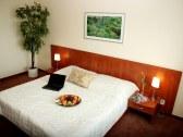 Hotel Bratislava - Bratislava #6