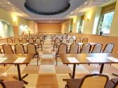 Arcadia - konferenčná miestnosť