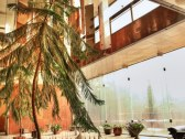 Ubytovňa v Ivanke pri Dunaji - Ivanka pri Dunaji #19