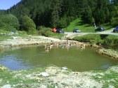 Prírodné liečivé jazierko - 3 km - Kalameny