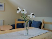 Prázdninové byty u kamaráta - Habovka #33