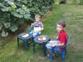 Drobci na záhrade