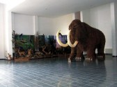 Mamut v životnej veľkosti - Krásno nad Kysucou