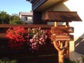 privat fleurs