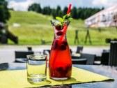 Horský hotel ENCIÁN - Donovaly - BB #15