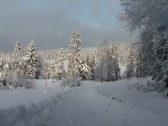 Drevenica pod Babou horou - Slaná voda - Oravská Polhora #23