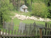 Chata Rita na Kysuciach - Čadca #14