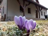 Prázdninový dom Bôrka *** - Fačkov #61