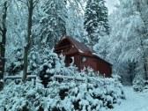 Chata pri lese, neďaleko SKI Čertov - Lazy pod Makytou #3