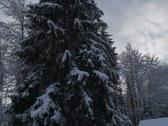 Chata BYSTRINA - Liptovo - Ružomberok #30