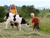 Farma pod Melichovou skalou - Detva #3