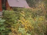 Chata BYSTRINA - Liptovo - Ružomberok #33