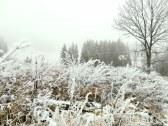 Chata Arctic House - Osádka #37